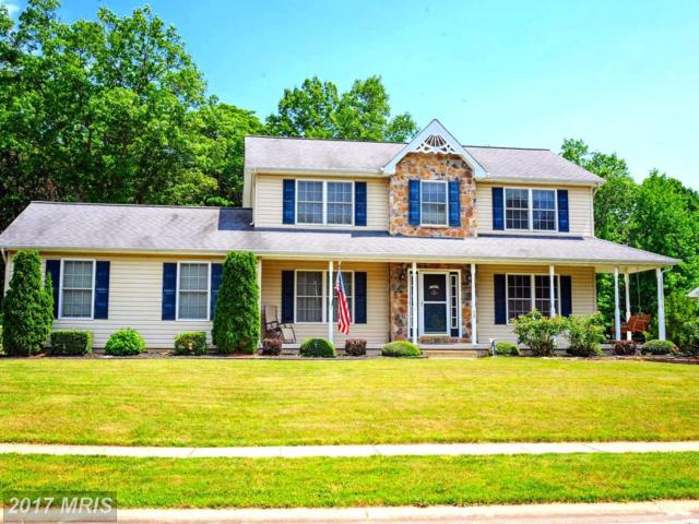 68 Whitaker Avenue, North East, MD 21901 (#CC9999487) :: Pearson Smith Realty