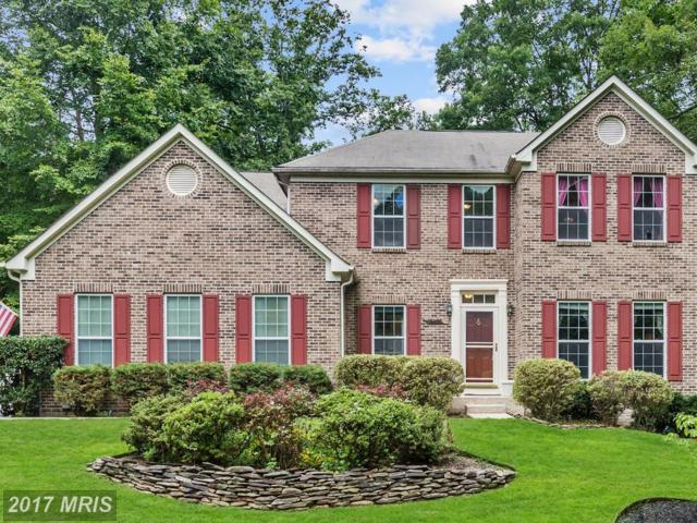 16620 Clydesdale Place, Hughesville, MD 20637 (#CH10032896) :: LoCoMusings