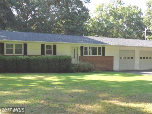 15625 Woodland Point Road, Newburg, MD 20664 (#CH10053512) :: Pearson Smith Realty