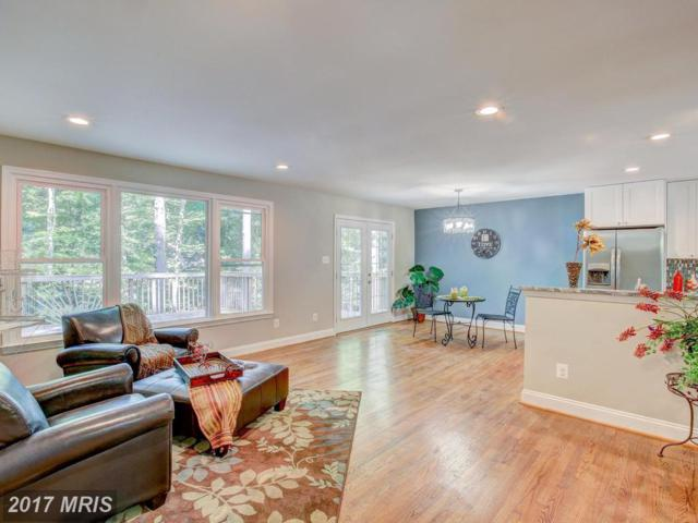 13060 West Circle, Bryantown, MD 20617 (#CH10077570) :: LoCoMusings