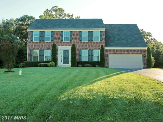 5513 Notched Beak Court, Waldorf, MD 20601 (#CH10078630) :: LoCoMusings