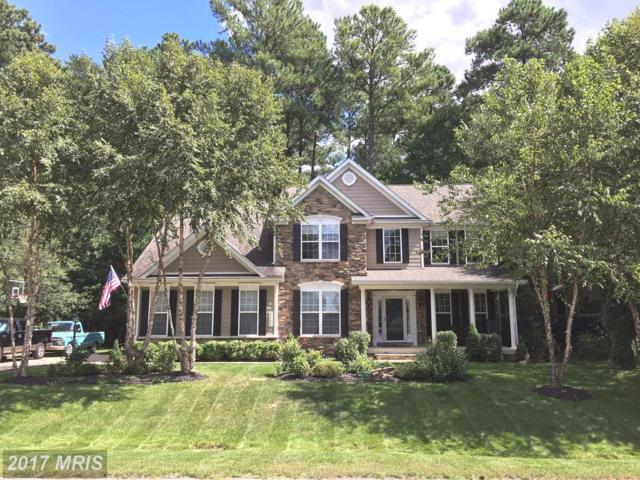 11215 Lord Baltimore Drive, Swan Point, MD 20645 (#CH10081448) :: Pearson Smith Realty