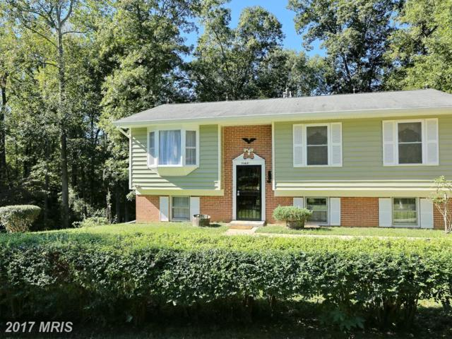 7563 Newman Drive, Charlotte Hall, MD 20622 (#CH10086058) :: The Bob Lucido Team of Keller Williams Integrity