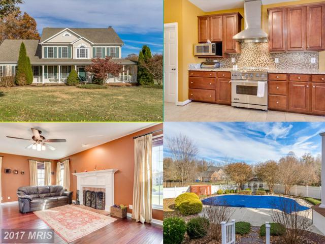 14510 Dusty Miller Court, Hughesville, MD 20637 (#CH10108929) :: Pearson Smith Realty