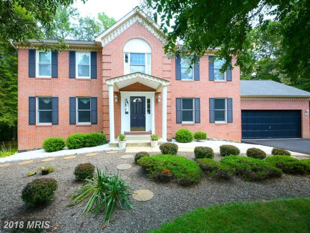 4461 Jorden Lane, Waldorf, MD 20601 (#CH10128313) :: Pearson Smith Realty