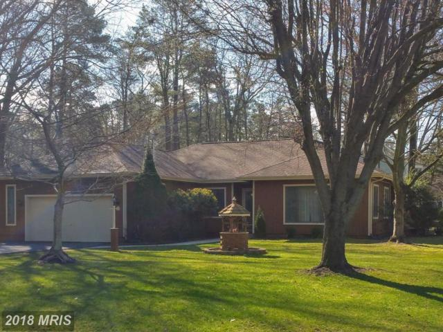 14715 Wisteria Drive, Swan Point, MD 20645 (#CH10182625) :: Colgan Real Estate