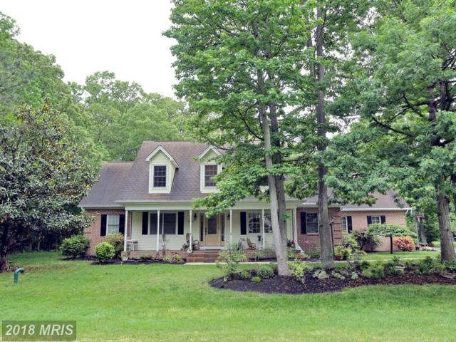 14825 King Charles Drive, Swan Point, MD 20645 (#CH10241059) :: The Gus Anthony Team