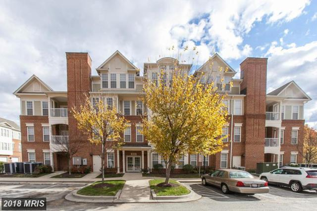 800 Edelen Station Place #203, La Plata, MD 20646 (#CH10265909) :: Wilson Realty Group