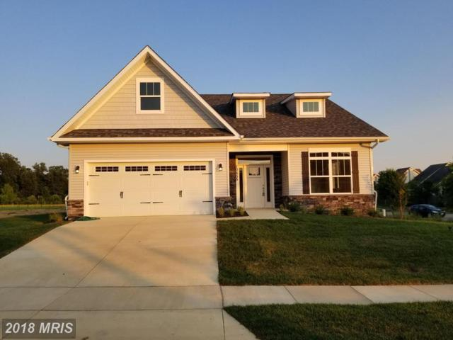 10655 Winding Trail Court, Waldorf, MD 20603 (#CH10325446) :: Maryland Residential Team