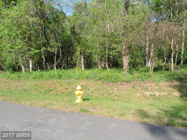 12122 Riverview Drive, Newburg, MD 20664 (#CH9925685) :: Pearson Smith Realty
