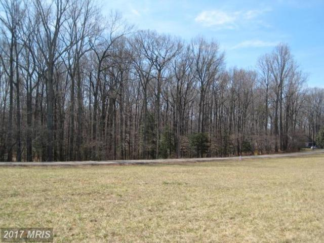 Cool Springs Farm Place, La Plata, MD 20646 (#CH9945965) :: Pearson Smith Realty