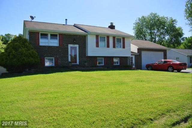 9300 Overlook Circle, Newburg, MD 20664 (#CH9947299) :: LoCoMusings