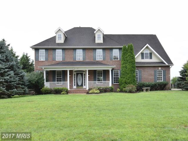 416 Dunlap Drive, Berryville, VA 22611 (#CL10018125) :: Pearson Smith Realty