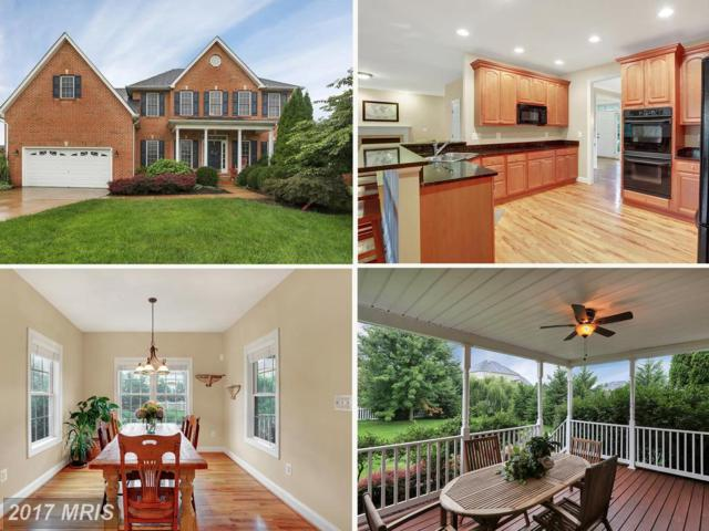 417 Lindsay Court, Berryville, VA 22611 (#CL10028299) :: Pearson Smith Realty