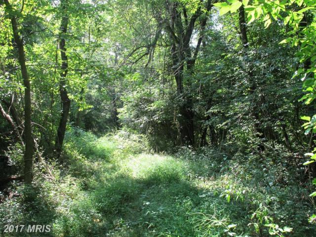 Triple J Road, Berryville, VA 22611 (#CL10040811) :: Pearson Smith Realty