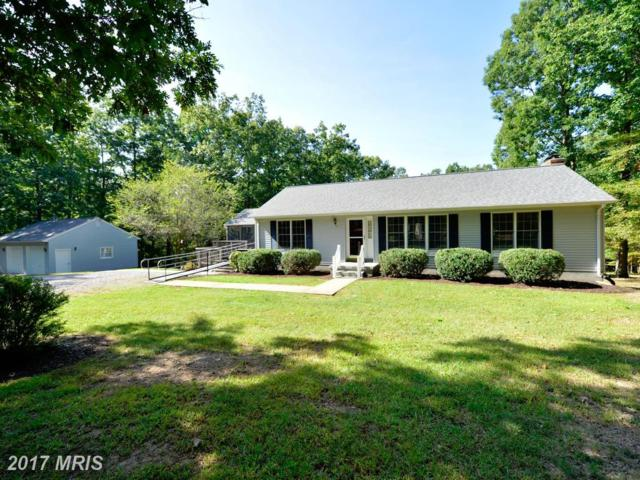2107 Harry Byrd Highway, Bluemont, VA 20135 (#CL10055026) :: Pearson Smith Realty