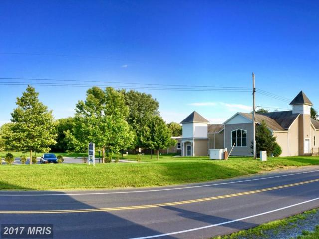 14401 Lord Fairfax Highway, White Post, VA 22663 (#CL10070279) :: Pearson Smith Realty