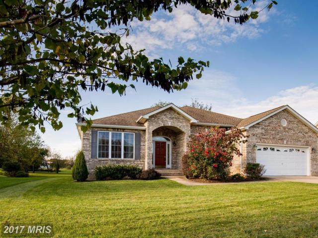 313 Hermitage Boulevard, Berryville, VA 22611 (#CL10090865) :: Pearson Smith Realty