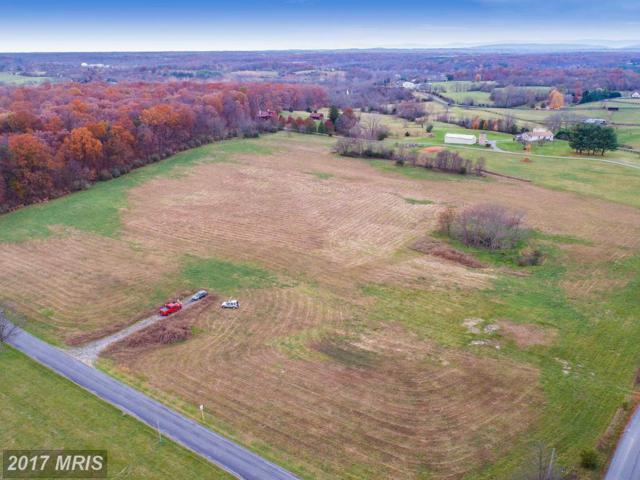 Pierce Road, Berryville, VA 22611 (#CL10106940) :: The Putnam Group
