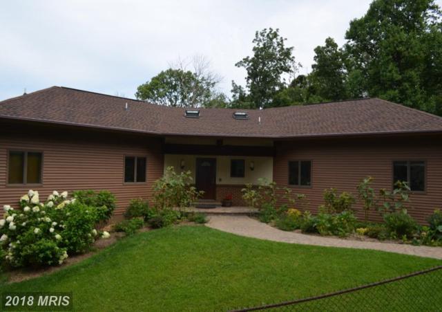 19417 Blueridge Mountain Road, Bluemont, VA 20135 (#CL10129391) :: LoCoMusings