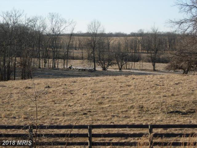 0 Minniewood Lane, Berryville, VA 22611 (#CL10149662) :: The Dwell Well Group
