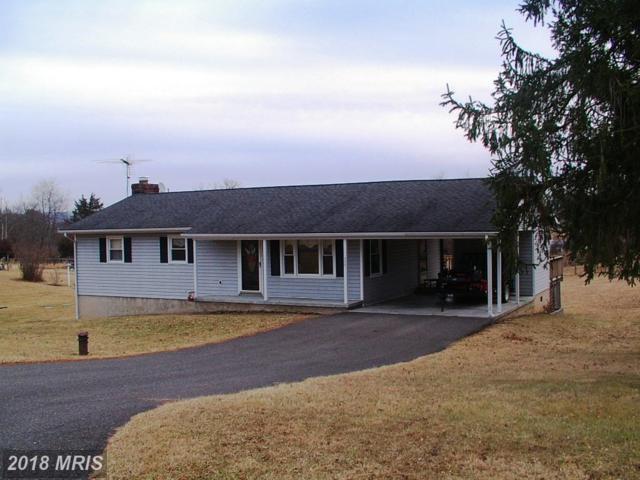 225 Possum Hollow Lane, Berryville, VA 22611 (#CL10161570) :: The Dwell Well Group