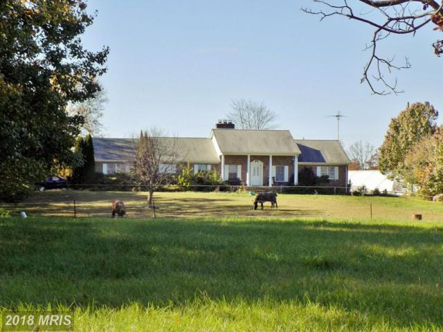 67 Fishpaw Road, Berryville, VA 22611 (#CL10162527) :: The Dwell Well Group