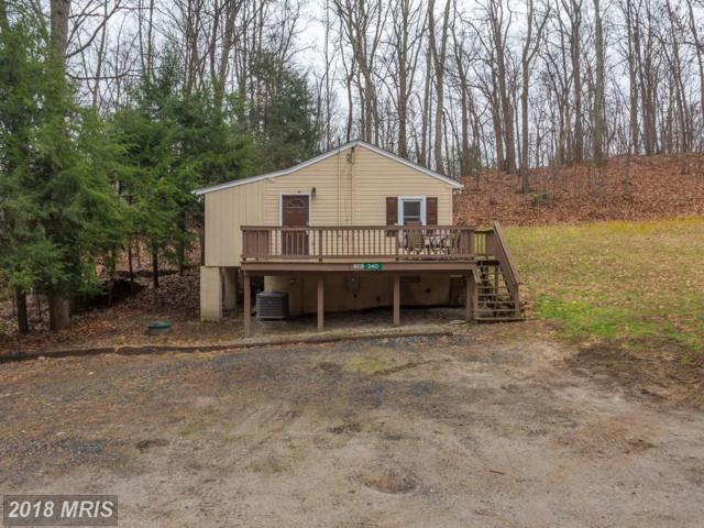 340 Timber Lane, Bluemont, VA 20135 (#CL10169233) :: LoCoMusings