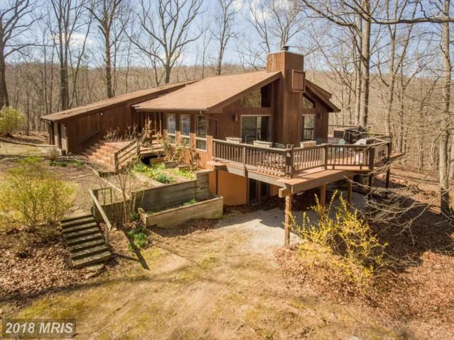 2156 Feltner Road, Bluemont, VA 20135 (#CL10201147) :: LoCoMusings