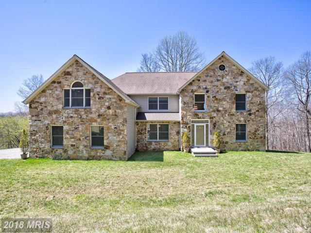17991 Raven Rocks Road, Bluemont, VA 20135 (#CL10214940) :: LoCoMusings