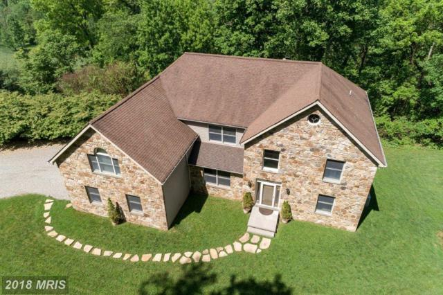 17991 Raven Rocks Road, Bluemont, VA 20135 (#CL10265043) :: LoCoMusings