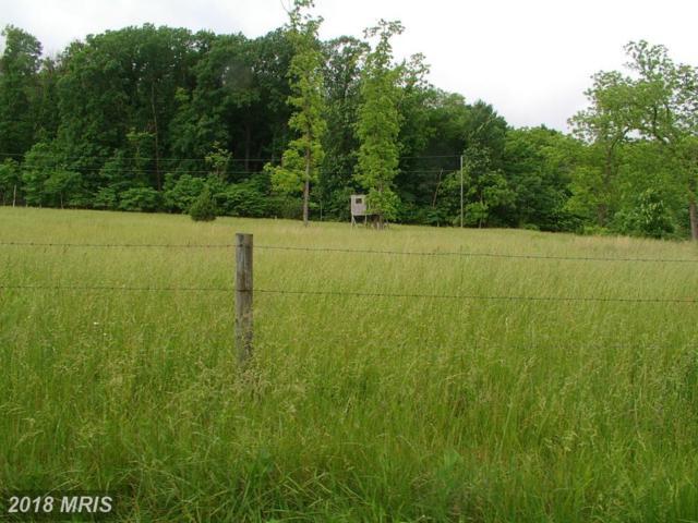 Ginns Road, Berryville, VA 22611 (#CL10267939) :: Keller Williams Pat Hiban Real Estate Group