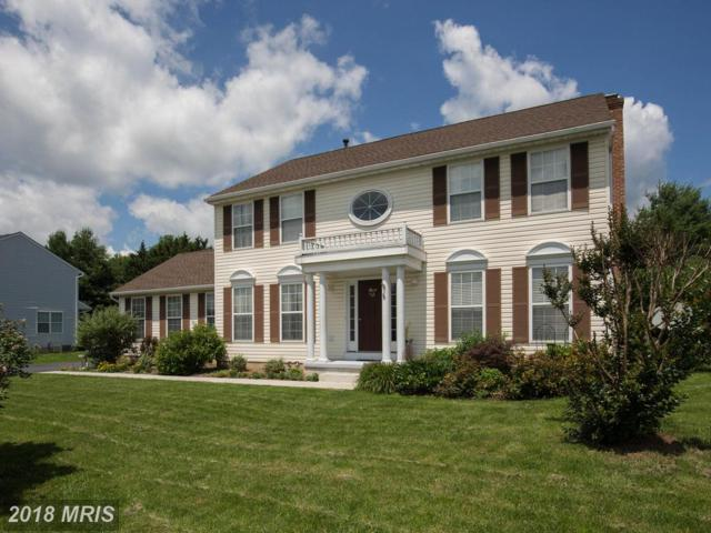 312 Mosby Boulevard, Berryville, VA 22611 (#CL10284926) :: The Gus Anthony Team