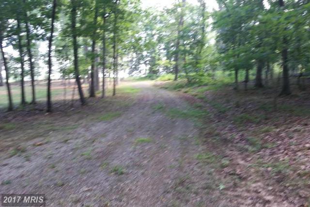 Kinsky Lane, Berryville, VA 22611 (#CL9861314) :: Pearson Smith Realty