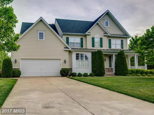 117 Tyson Drive, Berryville, VA 22611 (#CL9930250) :: LoCoMusings