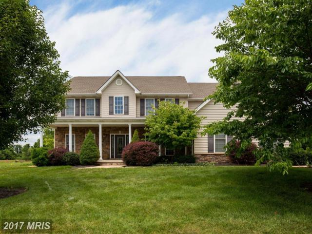 209 Tyson Drive, Berryville, VA 22611 (#CL9991356) :: Pearson Smith Realty