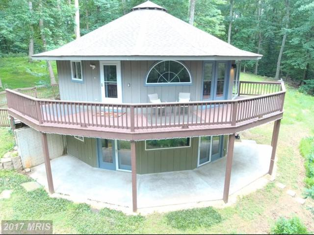 3784 Calmes Neck Lane, Boyce, VA 22620 (#CL9993474) :: Pearson Smith Realty