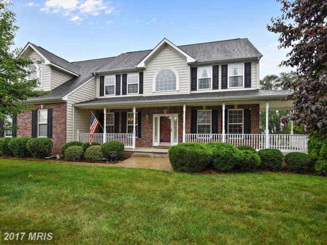 345 Hermitage Boulevard, Berryville, VA 22611 (#CL9998105) :: Pearson Smith Realty