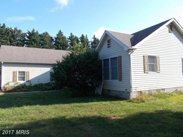 8183 Arch Drive, Denton, MD 21629 (#CM10013605) :: Pearson Smith Realty