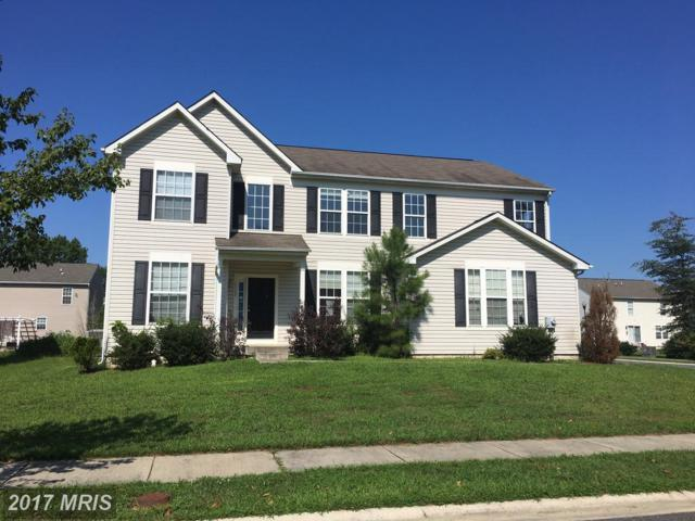 1113 Daylily Lane, Denton, MD 21629 (#CM10020194) :: Pearson Smith Realty