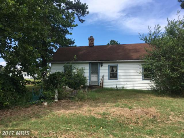 21100 Marsh Creek Road, Preston, MD 21655 (#CM10020607) :: Pearson Smith Realty
