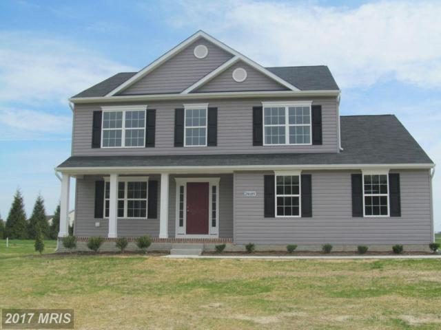 24706 Tribbett Circle, Ridgely, MD 21660 (#CM10035362) :: Pearson Smith Realty