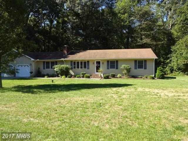 4990 Laurel Grove Road, Federalsburg, MD 21632 (#CM10053332) :: Pearson Smith Realty