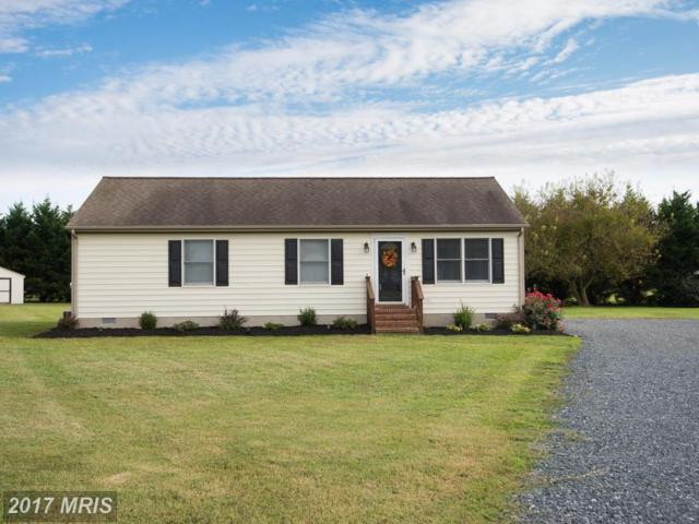 3211 Greenfield Court, Preston, MD 21655 (#CM10057849) :: Pearson Smith Realty