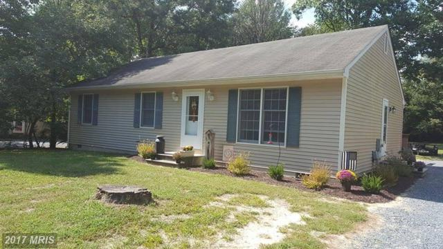 27368 Patricia Court, Federalsburg, MD 21632 (#CM10059760) :: Pearson Smith Realty