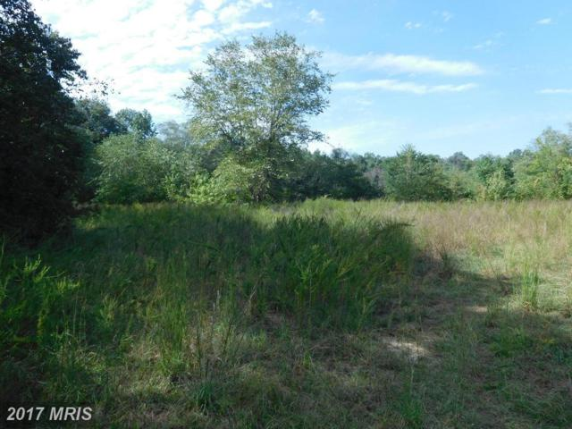Cherry Lane, Ridgely, MD 21660 (#CM10067057) :: Pearson Smith Realty