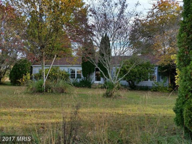 24281 Auction Road, Preston, MD 21655 (#CM10097575) :: Pearson Smith Realty