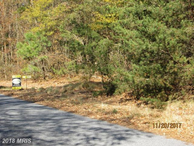 Meadowbrook Road, Federalsburg, MD 21632 (#CM10113151) :: RE/MAX Coast and Country