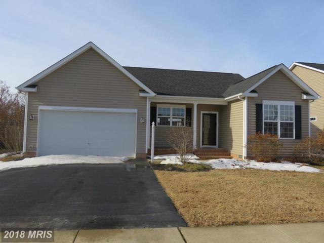 1202 Trice Meadows Circle, Denton, MD 21629 (#CM10119133) :: The Gus Anthony Team
