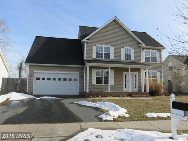 1304 Trice Meadows Circle, Denton, MD 21629 (#CM10132647) :: The Gus Anthony Team